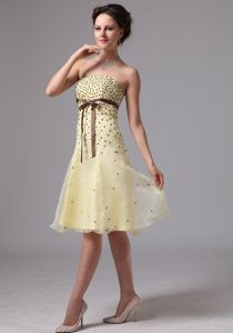Dropped Waist Beaded Light Yellow Cocktail Dress with Brown Sash