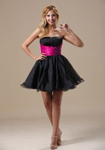 Alaska Discount Black Organza Cocktail Dress with Fushcia Waistband