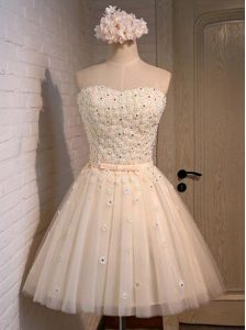 Champagne Sleeveless Appliques Mini Length Cocktail Dresses