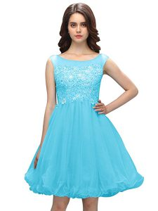 Dramatic Baby Blue Sleeveless Organza Zipper Cocktail Dress for Prom and Party