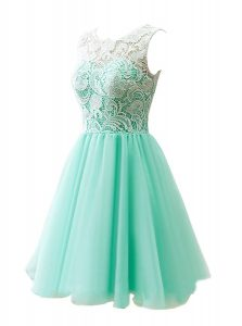 Classical A-line Cocktail Dress Apple Green Scoop Tulle Sleeveless Knee Length Clasp Handle