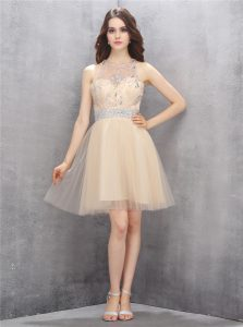Great Scoop Sleeveless Club Wear Knee Length Beading Champagne Tulle