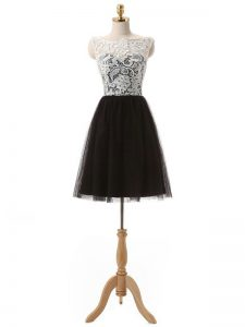 Simple Black Sleeveless Lace and Appliques Mini Length Cocktail Dress