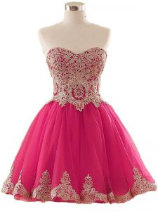 Hot Pink Tulle Lace Up Sweetheart Sleeveless Mini Length Club Wear Appliques