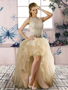 Decent Champagne Sleeveless Tulle Clasp Handle Cocktail Dresses for Prom and Party