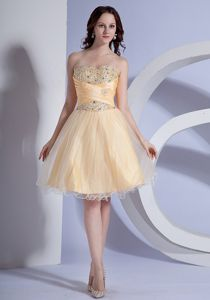 Light Yellow Taffeta & Organza A-line Cocktail Dress Beaded